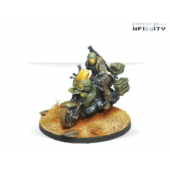 Infinity Decals - Combined Army 03
